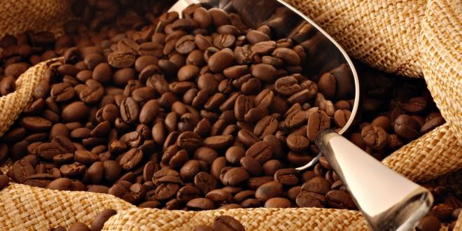 Coffee Beans 660×330